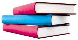 Boeksucces ondernemer boek uitgeven