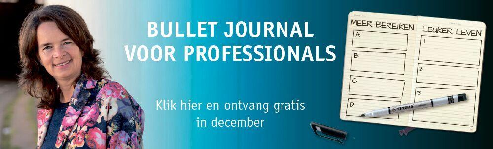 Banner bullet journal voor professionals - Ellen de Lange-Ros